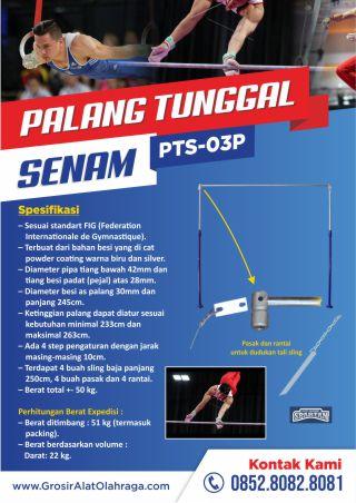 palang tunggal senam pts-03p